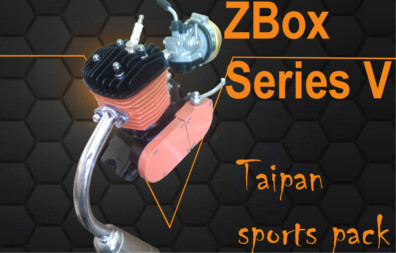 Taipan Sports Bicycle Motor